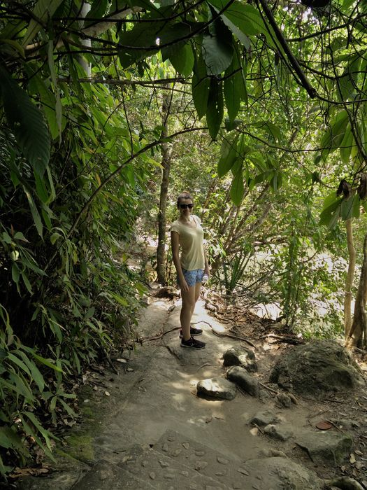 penang parc national trek jungle blog voyage